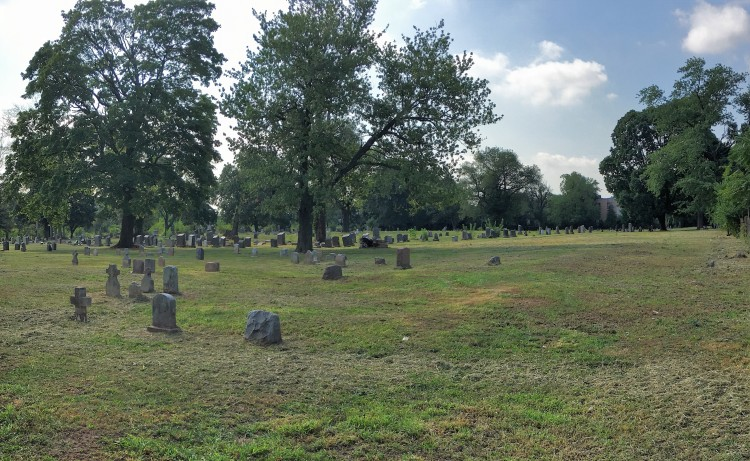 Section 10 graves and ash plots are available.